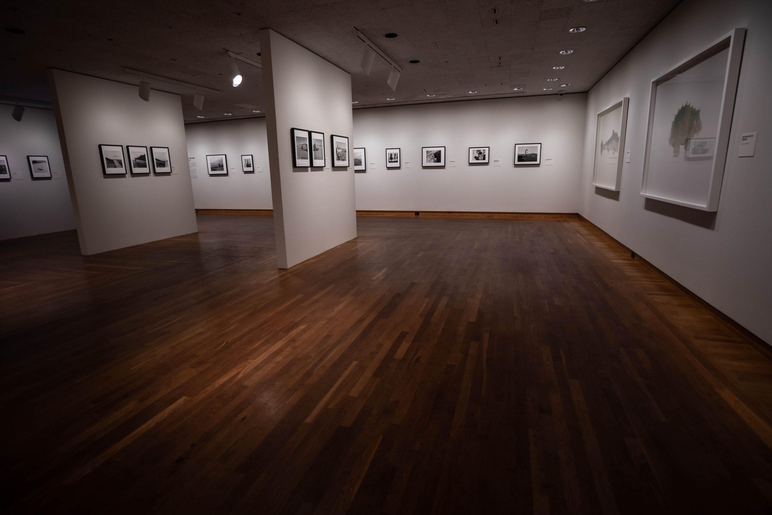 The Art Institute of Chicago in Chicago, Illinois by Annie Fairfax