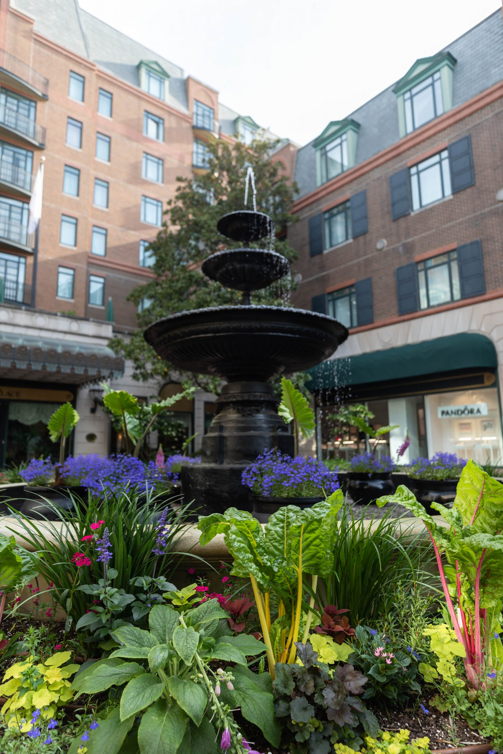 Fountain Outside of Belmond Charleston Place Luxury Hotel Written & Photographed by Annie Fairfax