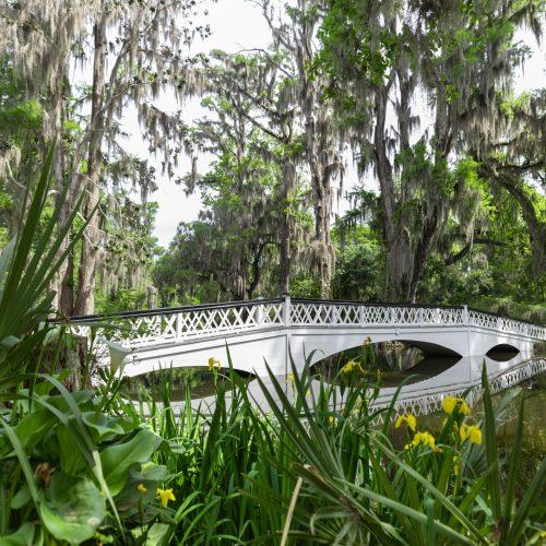Magnolia Plantation & Gardens in Charleston, SC