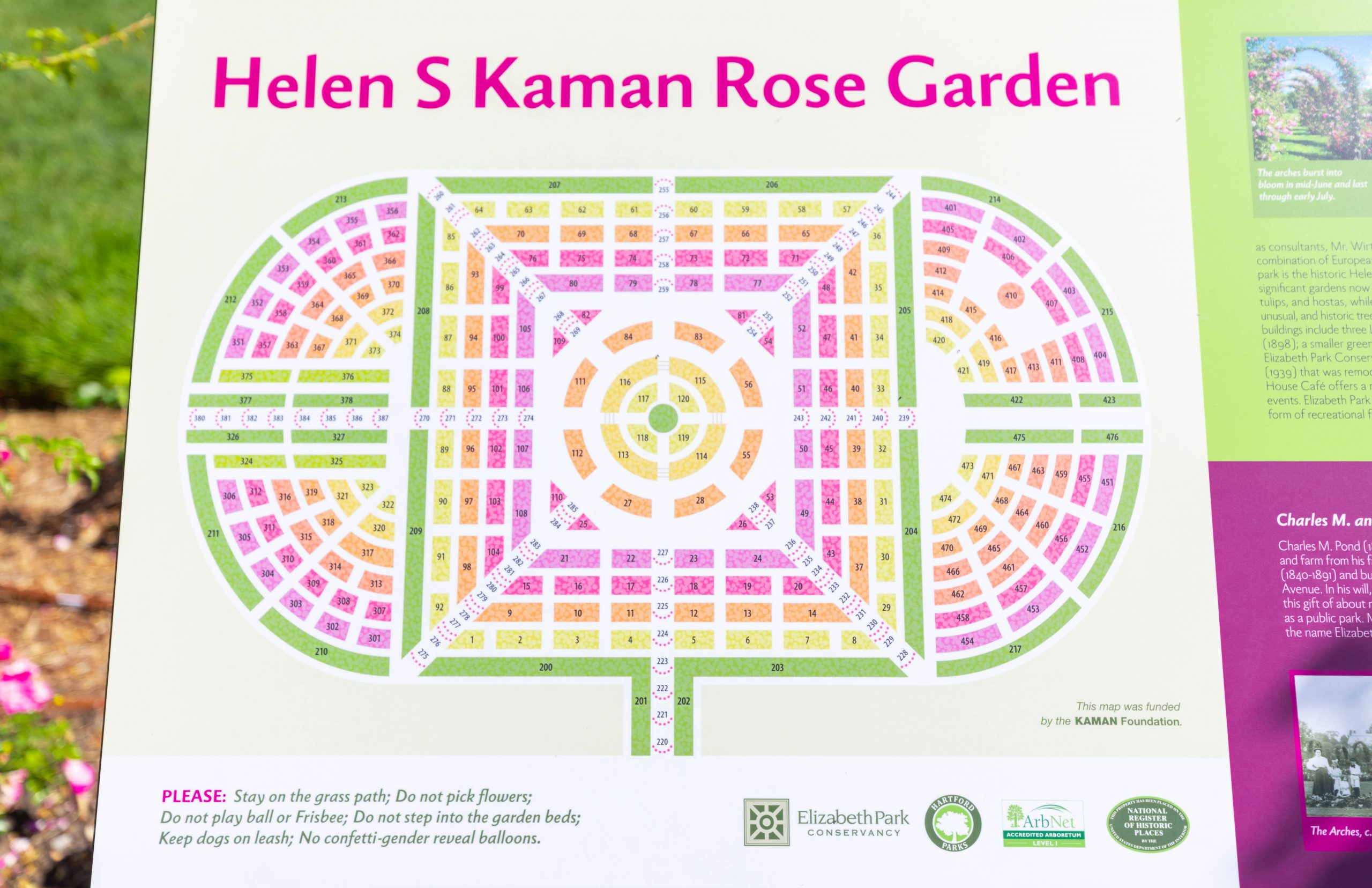 Aerial View of The Helen S Kaman Rose Garden within Elizabeth Park in Hartford, Connecticut Photographed by Annie Fairfax