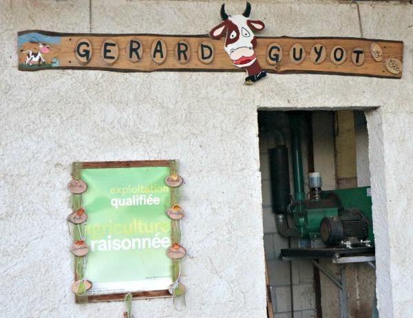 Comté Gerard Guyot