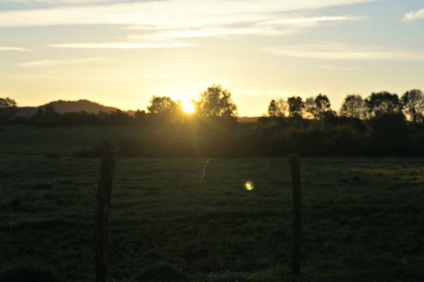 Comté soleil levant