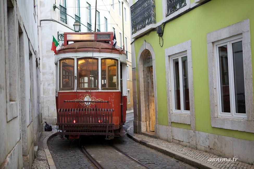 Lisbonne-jour285
