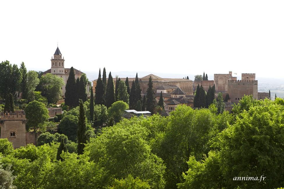 Alhambra29