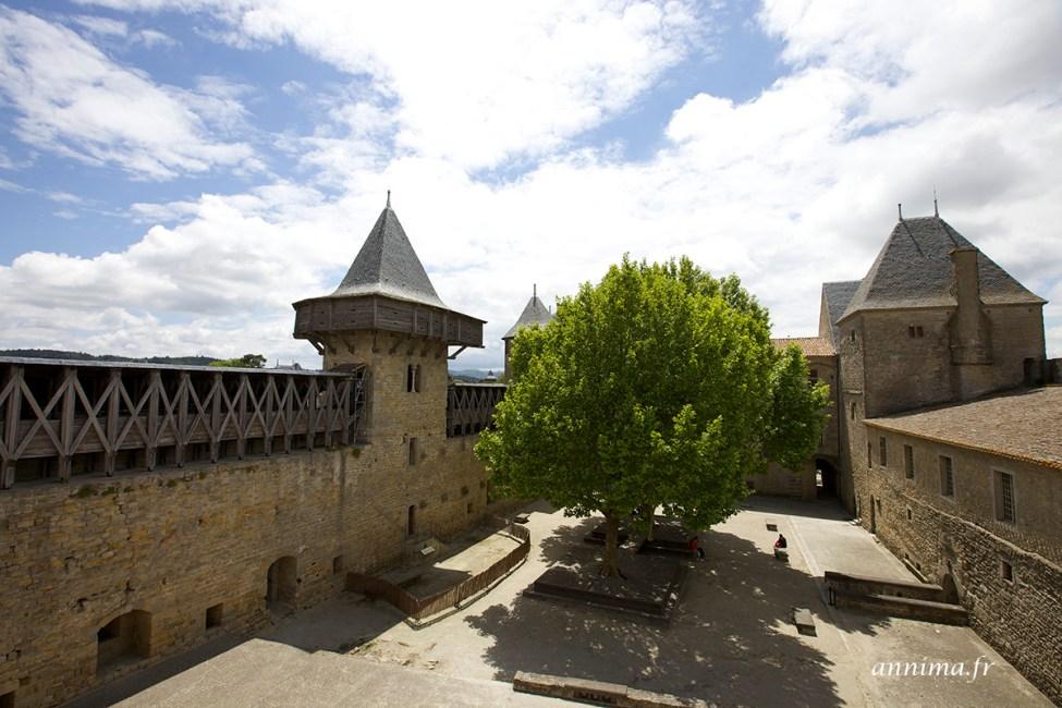 chateau-carcassonne16