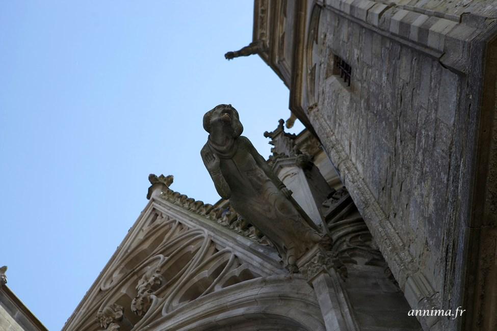 cite-carcassonne11