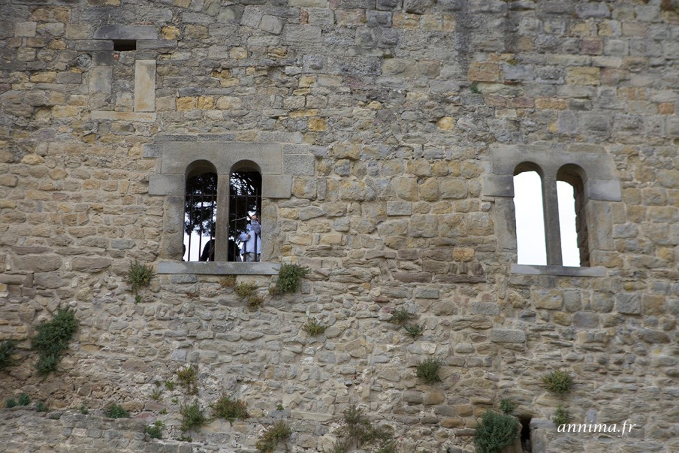 cite-carcassonne24