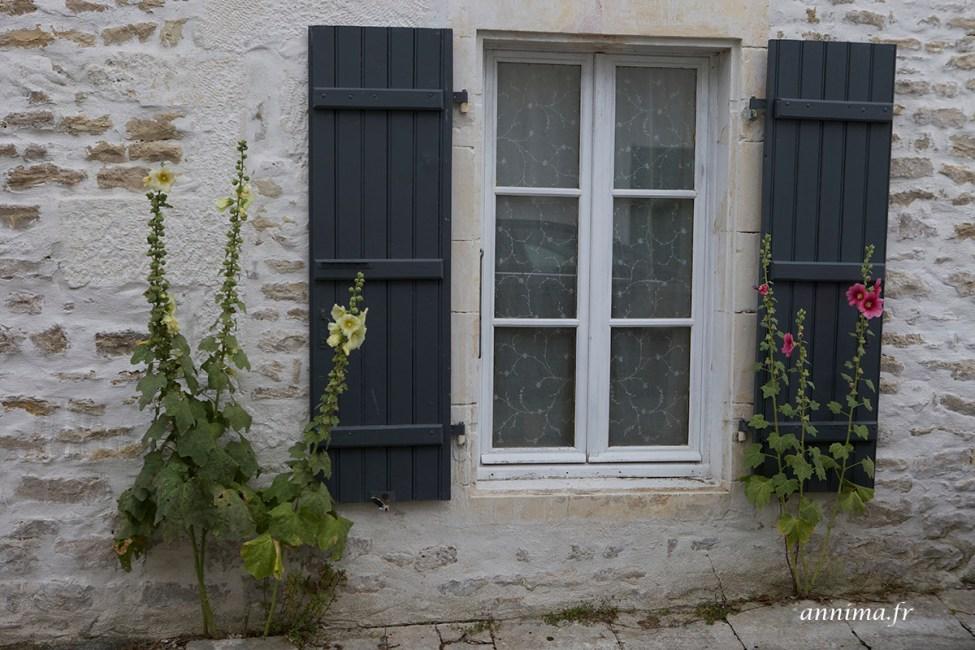 facades-Ré11