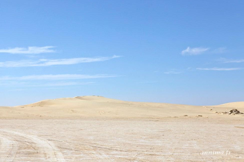 sahara-tunisie4