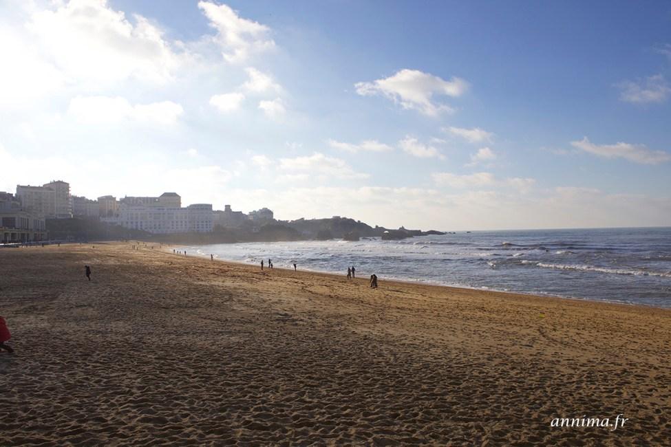 Biarritz-surf4