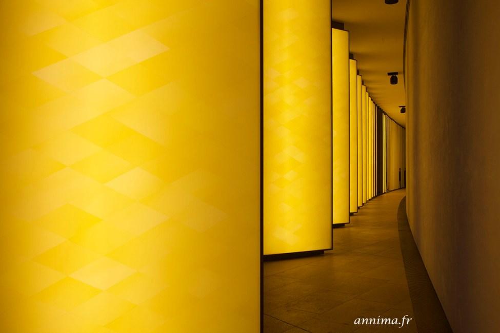 Fondation_Vuitton24