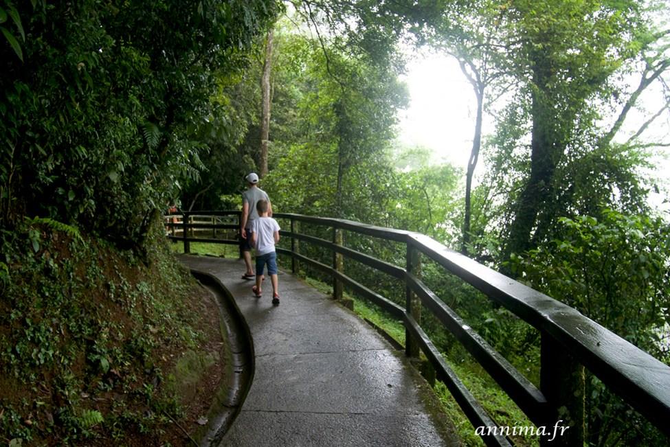 Iguacu15