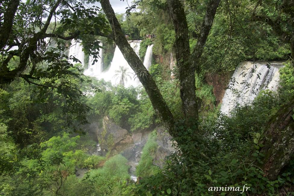 Iguazu-argentine12