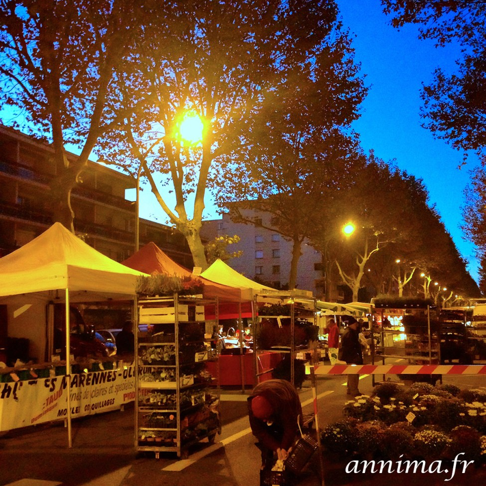 octobre-iphone-toulouse-7