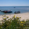 Portugal-Algarve-ria-formosa