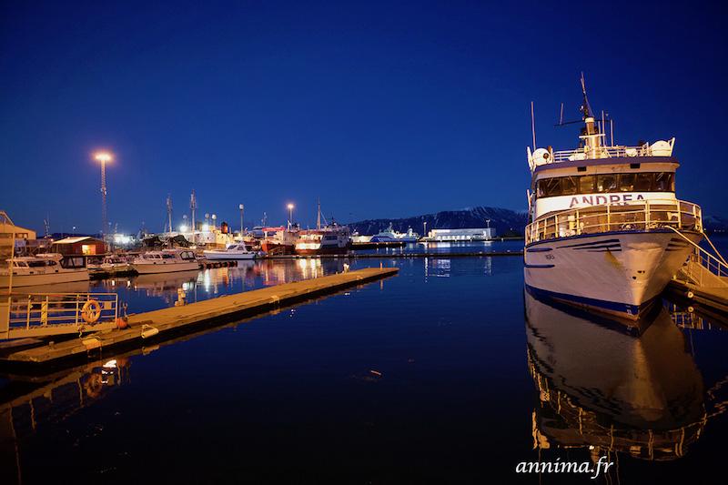 blue hour Reykjavik