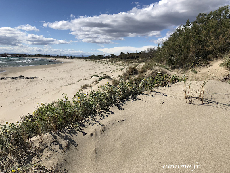 agde dune