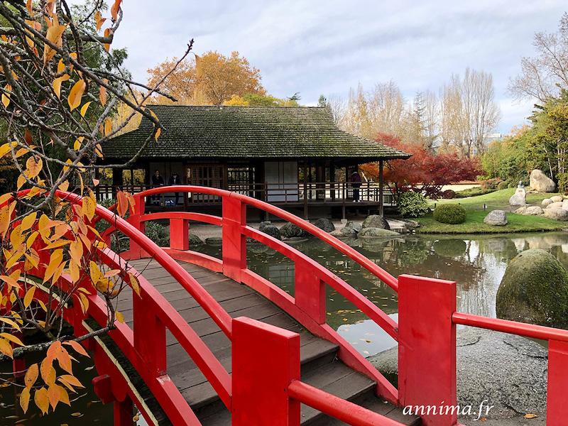 Le jardin Japonais de Toulouse en automne