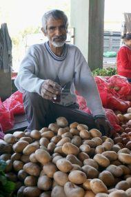 Market stall owner in Edirne, Turkey