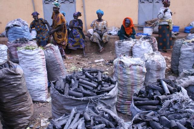 Mali 2010 (55)