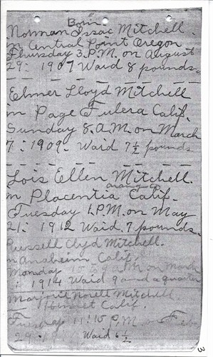 Sarah Ellen Miller Mitchell  Family Memorial p. 1