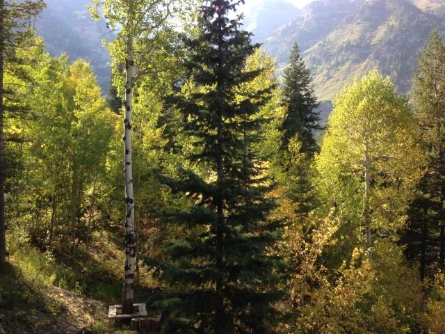 2014-9-20 RS Cabin Retreat Sundance (40)