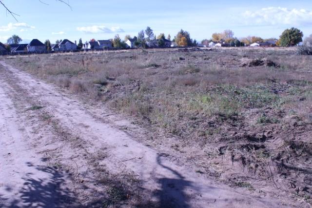 2014-10-27 Farley Orchard Murdered (14)