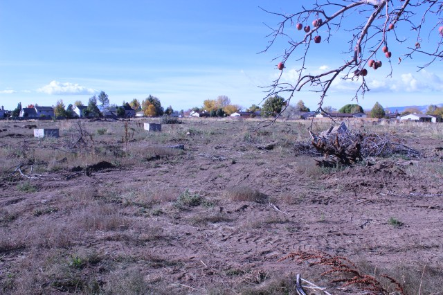 2014-10-27 Farley Orchard Murdered (3)