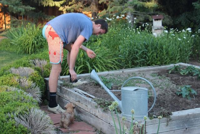 2015-6-20 Adam, Garden (1)