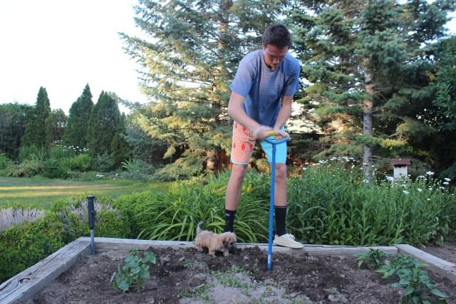 2015-6-20 Adam, Garden (5)