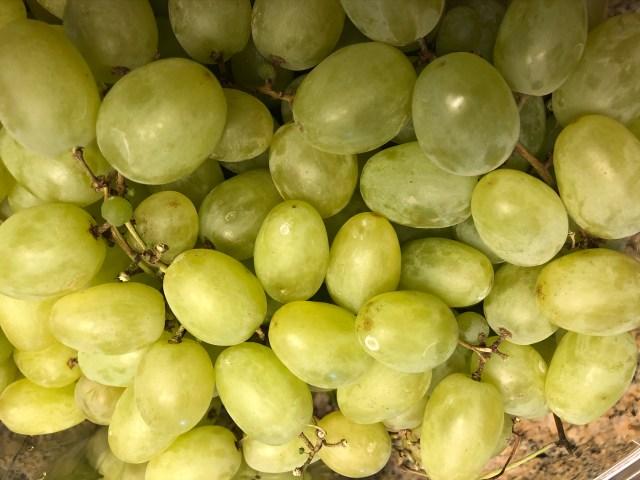 2019-10-4 Grape Ettiquite (4)