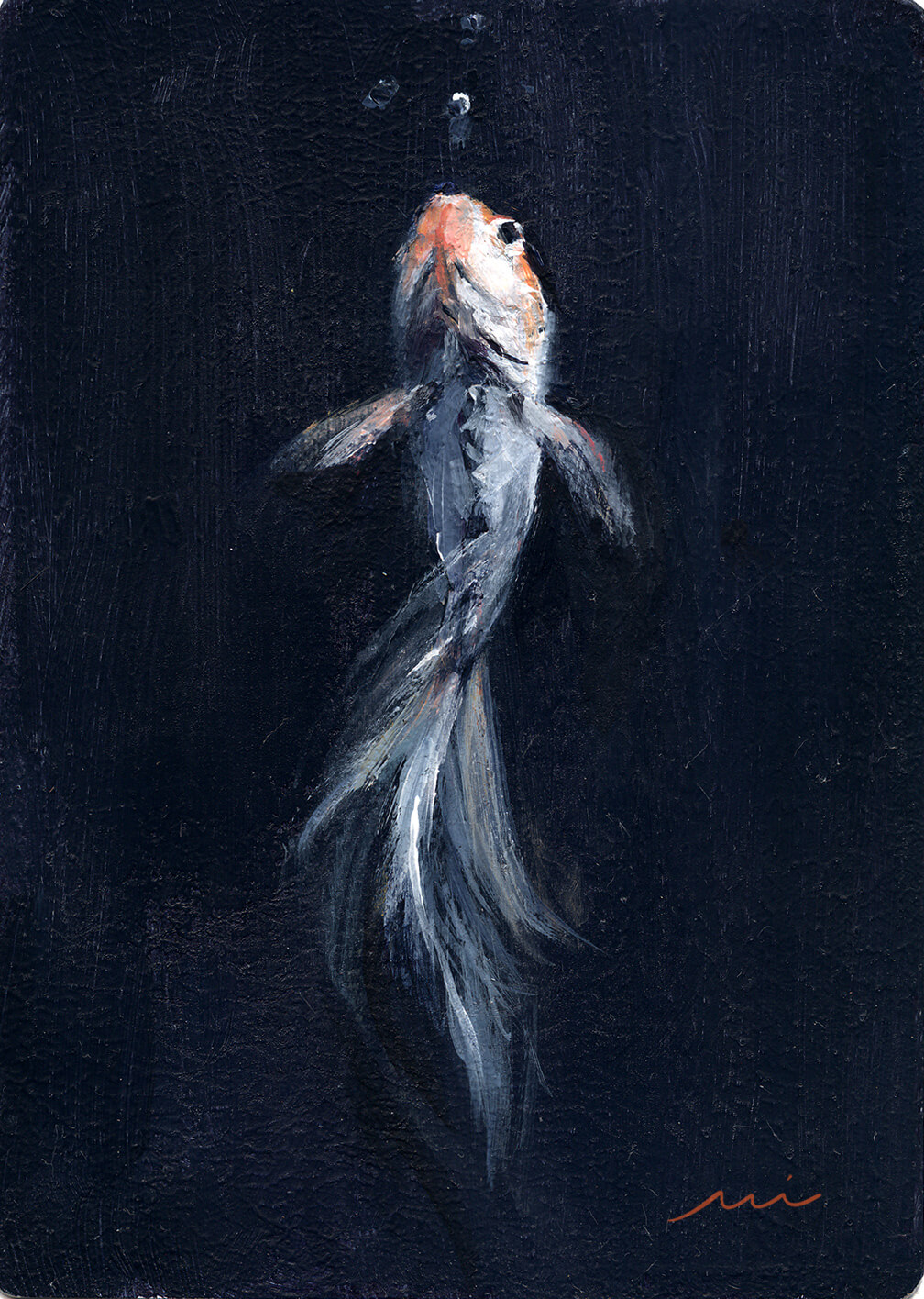 Pet Portrait: Fishy, 2014