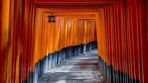 https://www.udemy.com/course/japan-in-depth-learning-1-japanese-basic-manners-and-rules/