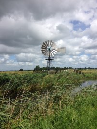 Ann Dijkstra, Friesland