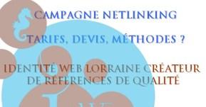 campagne netlinking par agence de référencement Nancy