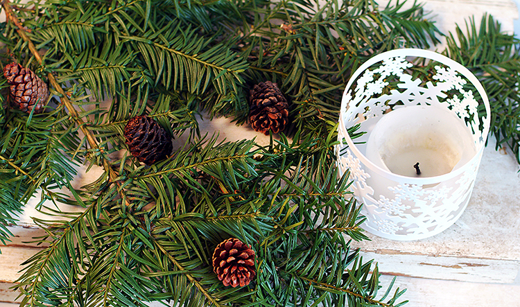 Christmas Decorations-evergreen-tree-white-candle