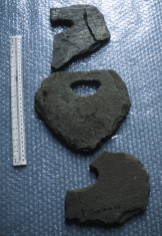 These unusual stone objects are found at Bronze Age structures in Shetland. They may have been used in the tethering of animals in byres.