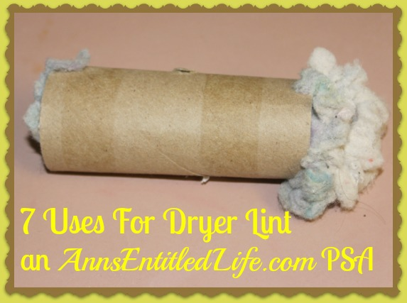 7 Uses For Dryer Lint