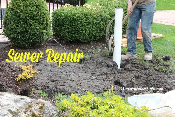 Sewer Repair