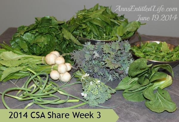 2014 CSA Share Week 3
