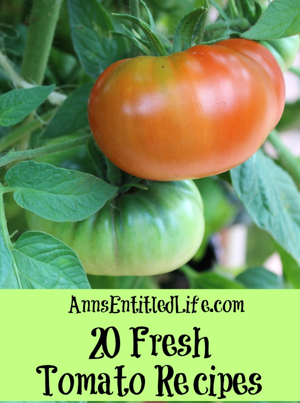 20 Fresh Tomato Recipes. Celebrate summer with incredible and delicious fresh tomato recipes. Roasted, marinated, grilled or straight from the vine; enjoy your bounty of garden tomatoes in a delightful new way with one of these 20 Fresh Tomato Recipes!