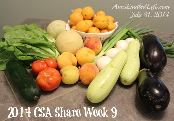 2014 CSA Share Week 9