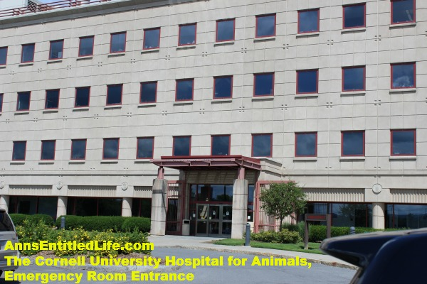 The Cornell University Hospital for Animals Emergency Room Entrance