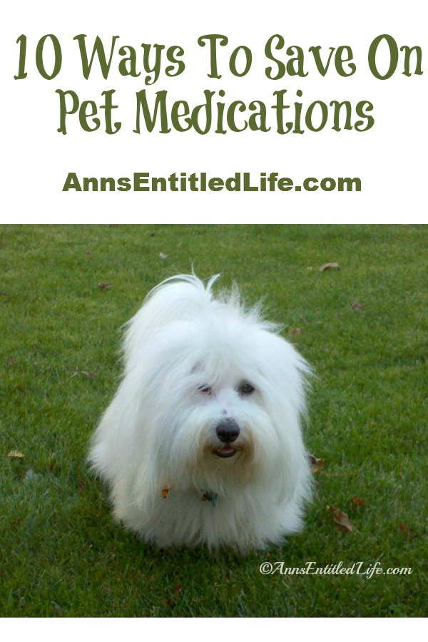 10 Ways To Save On Pet Medications; Medications for preventative care and chronic pet diseases can certainly add up, putting a real dent in your wallet. Here are some tips on how to save on pet medications.