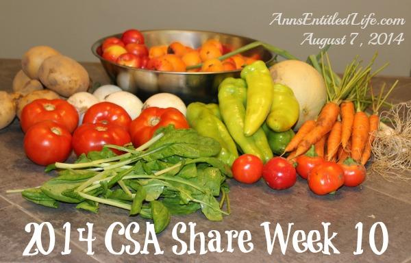 2014 CSA Share Week 10