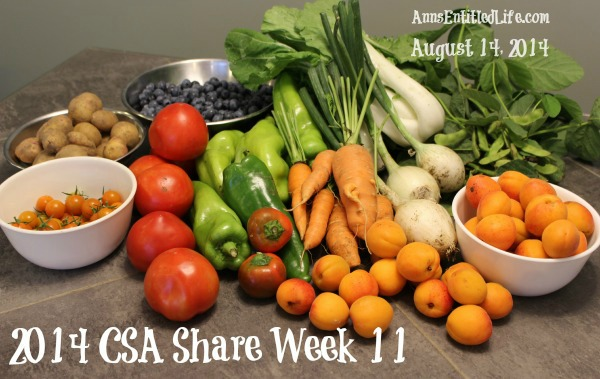 2014 CSA Share Week 11