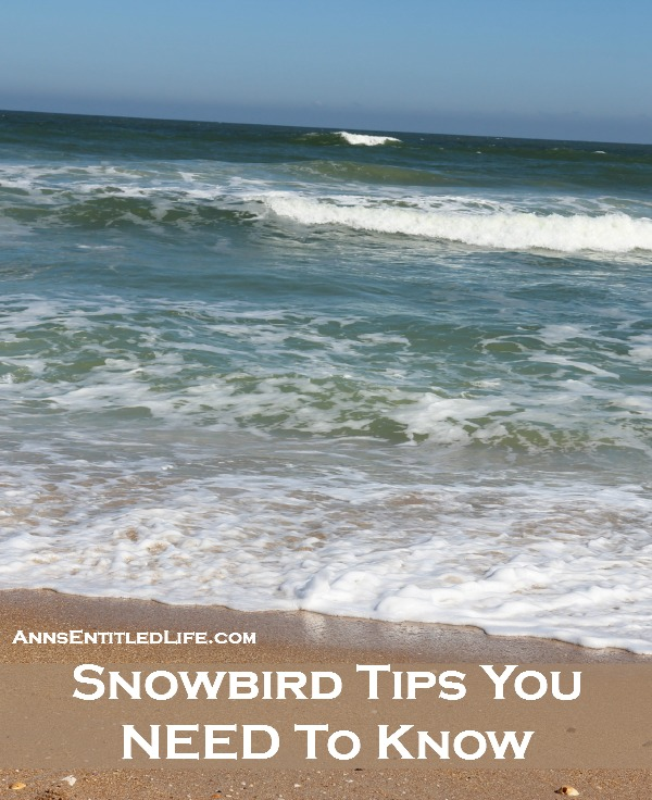 Snowbird Tips You NEED To Know. Are you a snowbird traveling south for the winter? Tips, advice and information for snowbird retirees (and non-retirees!) who plan to travel to warmer destinations during the winter months. For those that do not know what a snowbird is, it is commonly defined as a northerner who moves to a warmer southern state just for the winter months.