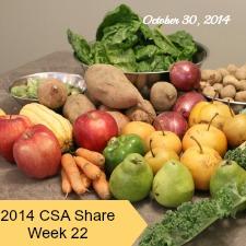 2014 CSA Share Week 22