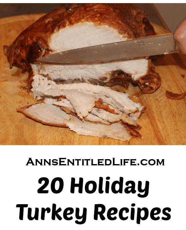 20 Holiday Turkey Recipes. Roasted, Brined, Slow Cooked or Deep Fried; try one of these mouth-watering Turkey Recipes this holiday season. From traditional to trendy, there is something for everyone in these 20 Holiday Turkey Recipes.