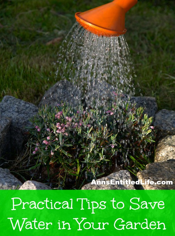 Practical Tips to Save Water in Your Garden. The use of excessive water means an increase on your meter, causing you to pay more money and cause possible plant damage. In order to prevent such situations, here are a few practical ways to save water in your garden.